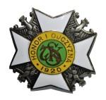 Odznaka 7 Pułku Strzelców Konnych Poznan Biedrusko Zygmaniak